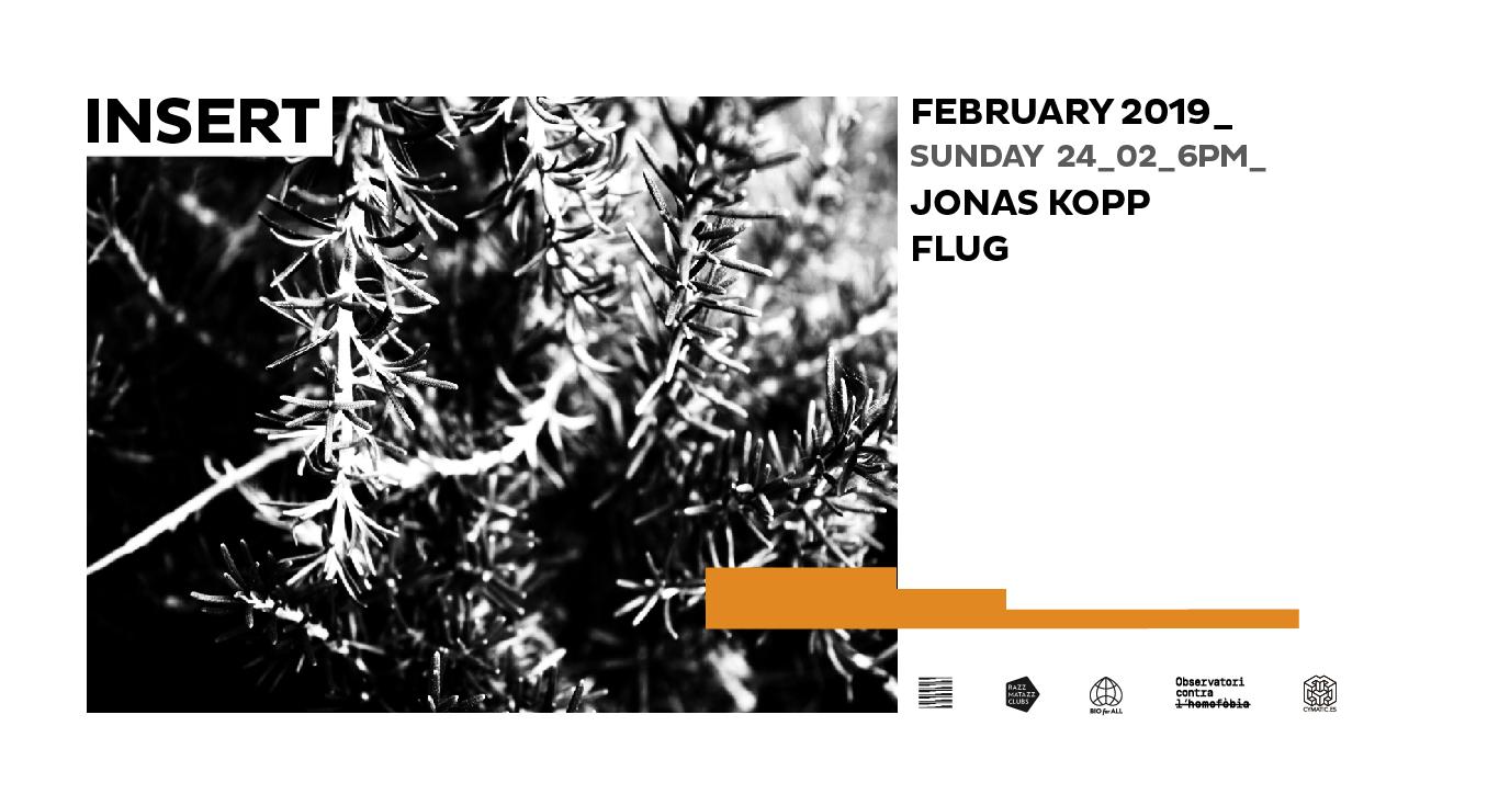 Jonas Kopp Flug